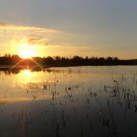 Coucher de soleil sur l'étang du Bas - RNR des étangs de Belval-en-Argonne